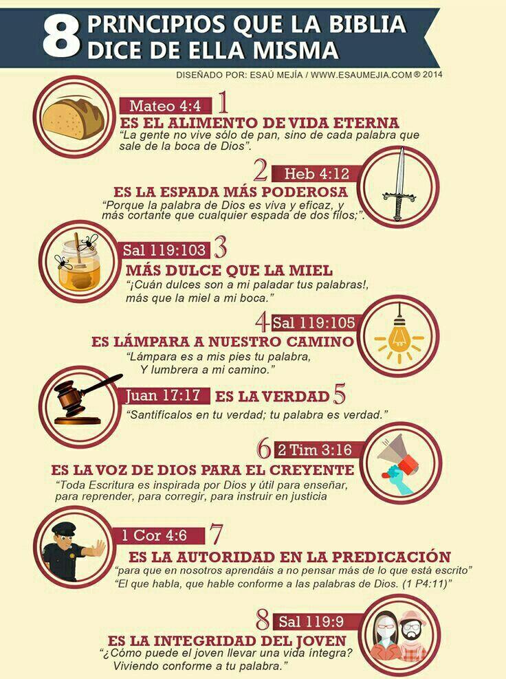 Versiculos De La Biblia De Fe: PRINCIPIOS BIBLICOS