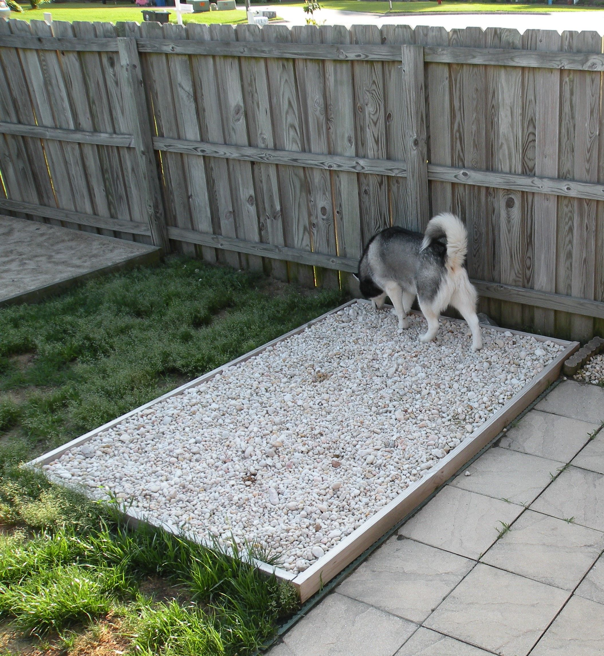 Outdoor Potty rock area for the dogs. Has underground