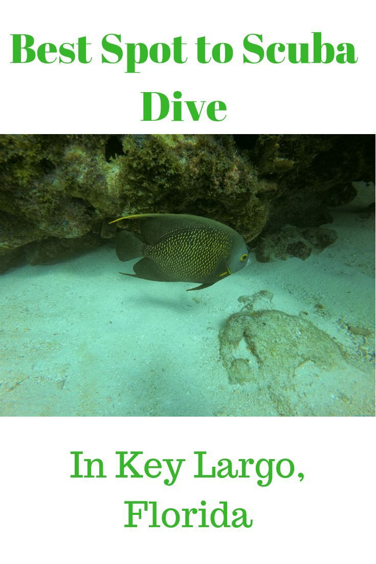 Florida Keys And Scuba Diving - Awesome Combo