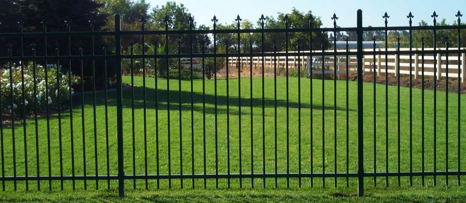 Titanium Fence Inc We Also Do Fence Repair And We Have Verities Of Fence Like Iron Chain Fence And Many More Are Iron Fence Wrought Iron Fences Iron Railing