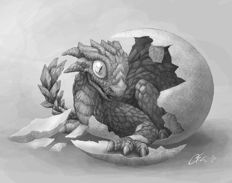 Hatchling Wip By Dashase On Deviantart Dragon Fantasy Myth