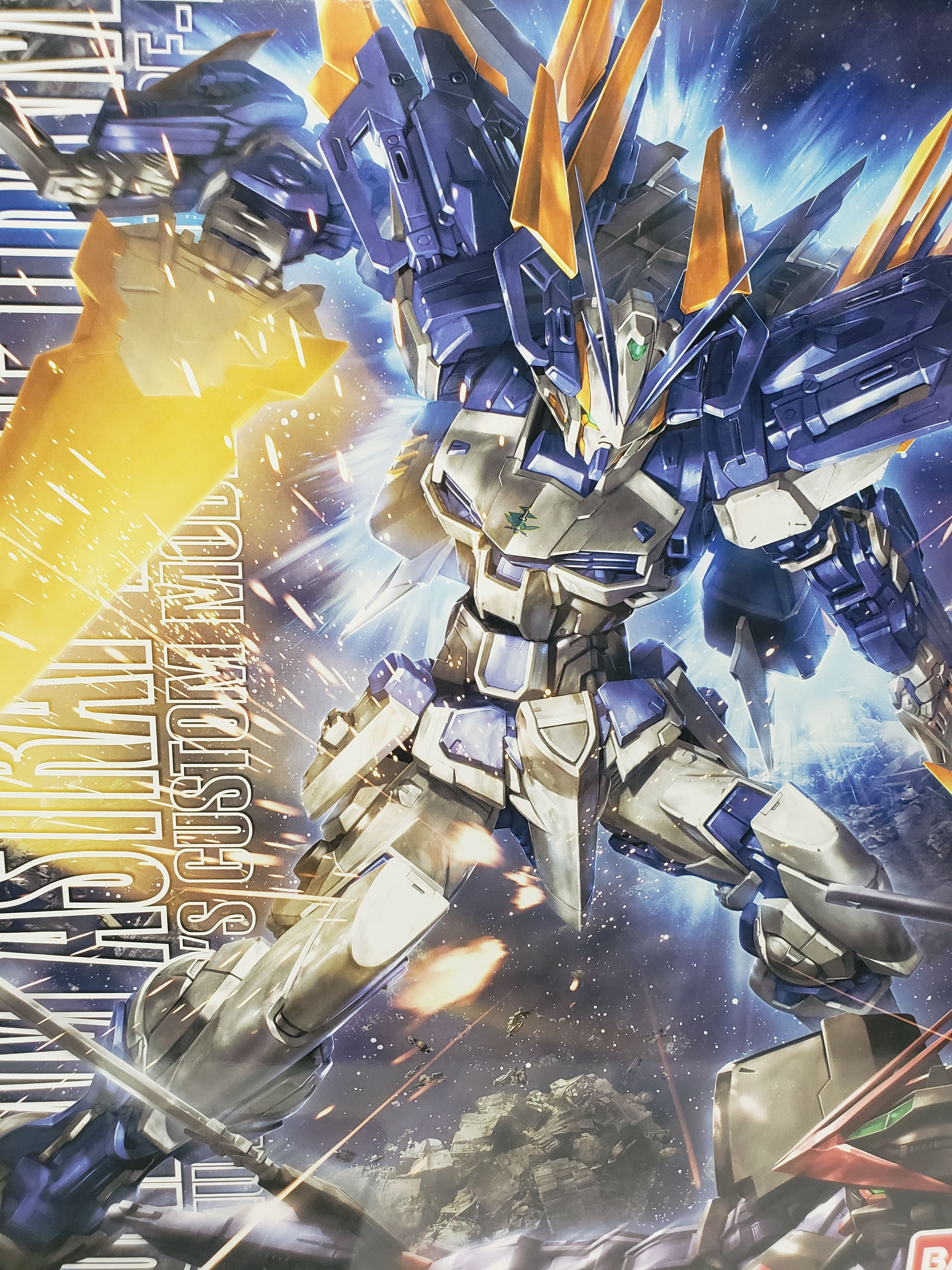 Gundam Astray Blue Frame Type D 1/100 MG (With images