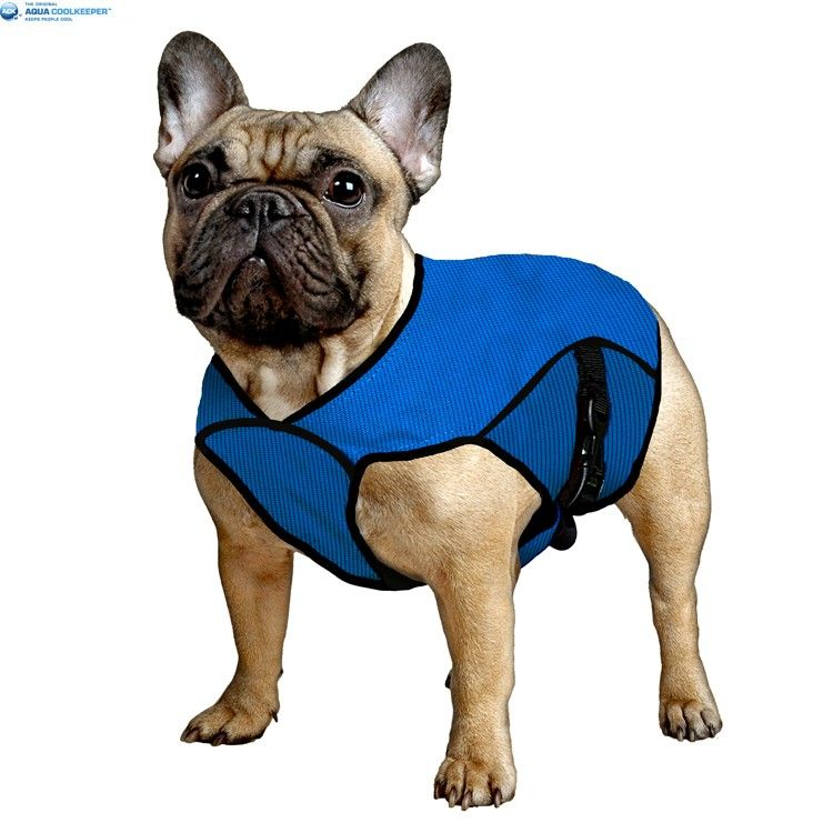Aqua Coolkeeper Cooling Pet Jacket, good idea for dogs in