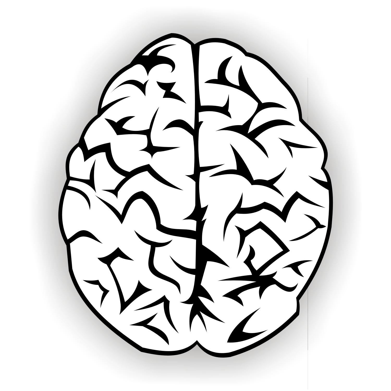 brain clip art to use with growth mindset bulletin board bulletin rh pinterest com brain thinking clipart free brain clip art free