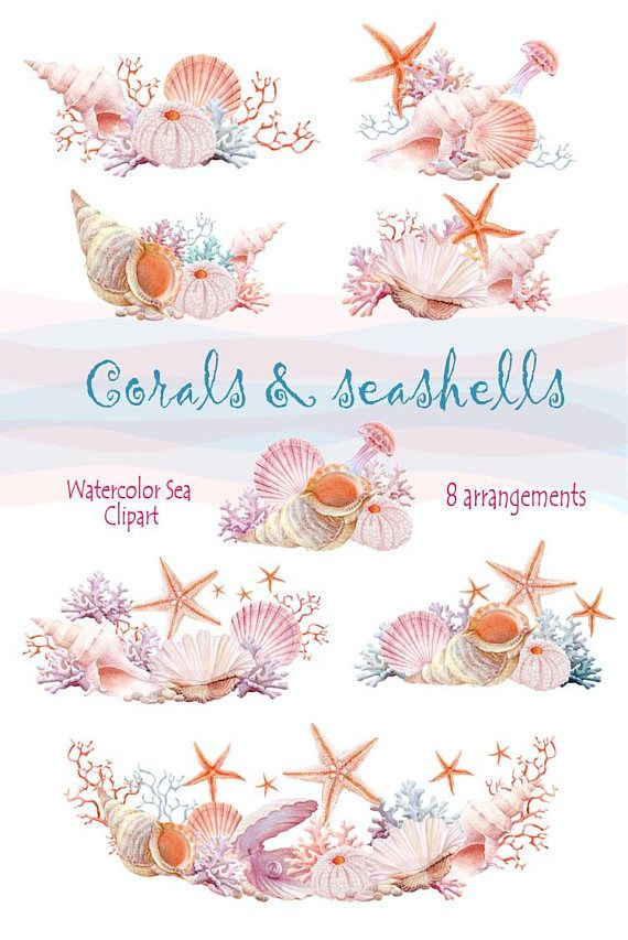 Watercolour Hand Painted Sea Clipart Arrangement With Seashells