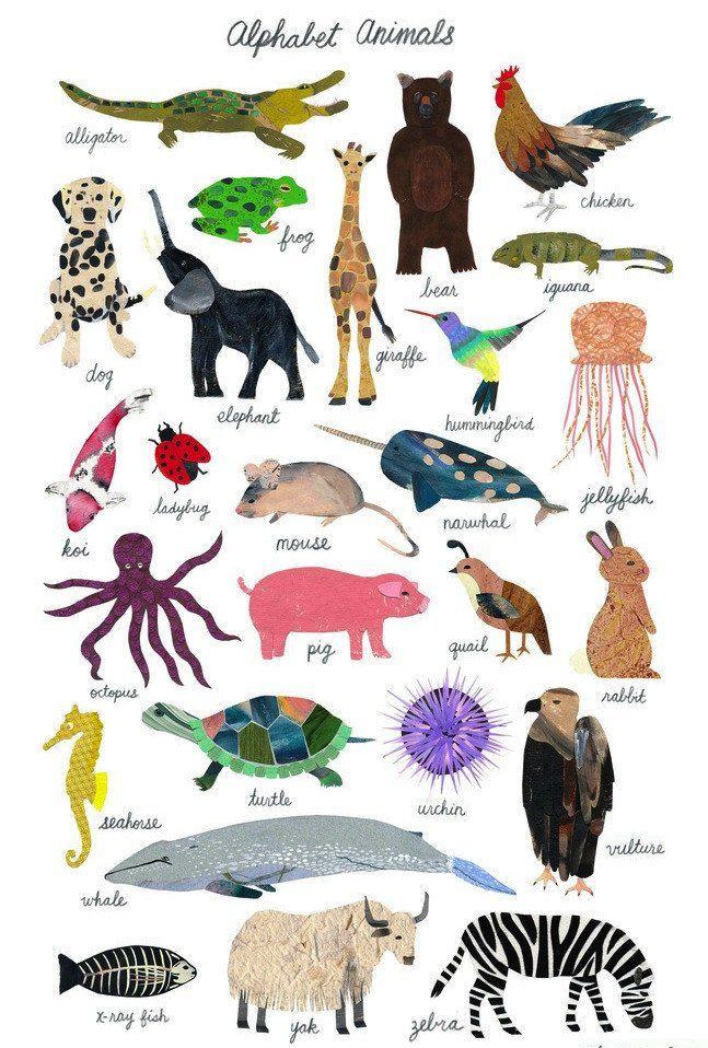 Alphabet Animals Animal Posters Animal Nursery Art Animals