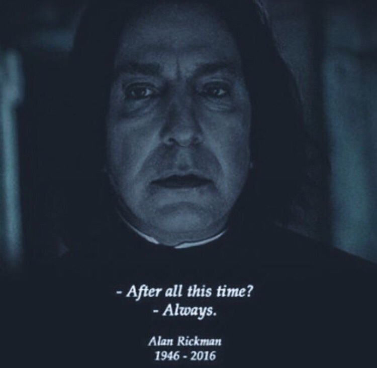 Image In Harry Potter Collection By Regina Loa Nieto Alan Rickman Harry Potter Alan Rickman Alan Rickman Snape