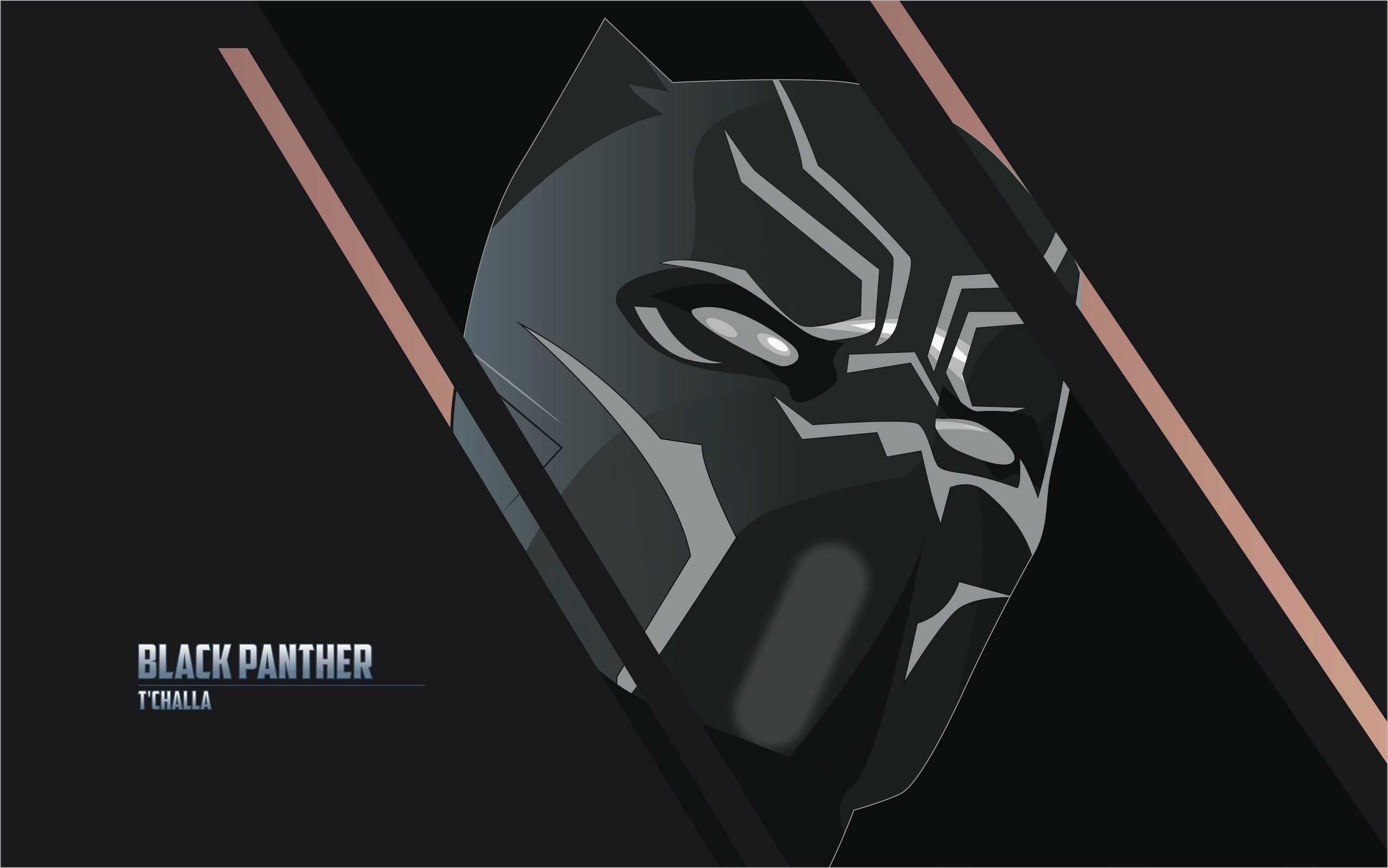 Black Panther Wallpaper 4k Pc Gallery 4k Black Panther Wallpaper Beautiful Wallpapers