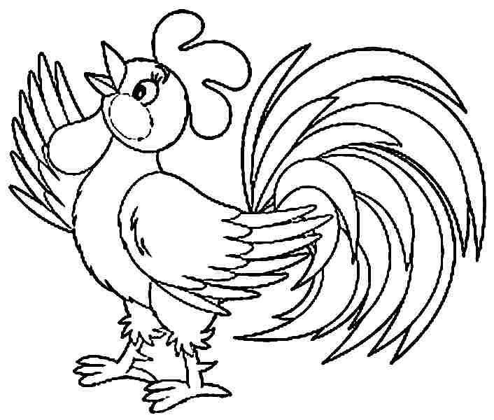 Colouring Pages Animal Rooster Free Printable For Preschool