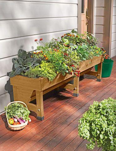 Vegtrug Patio Garden Gardener S Supply Raised Garden Beds
