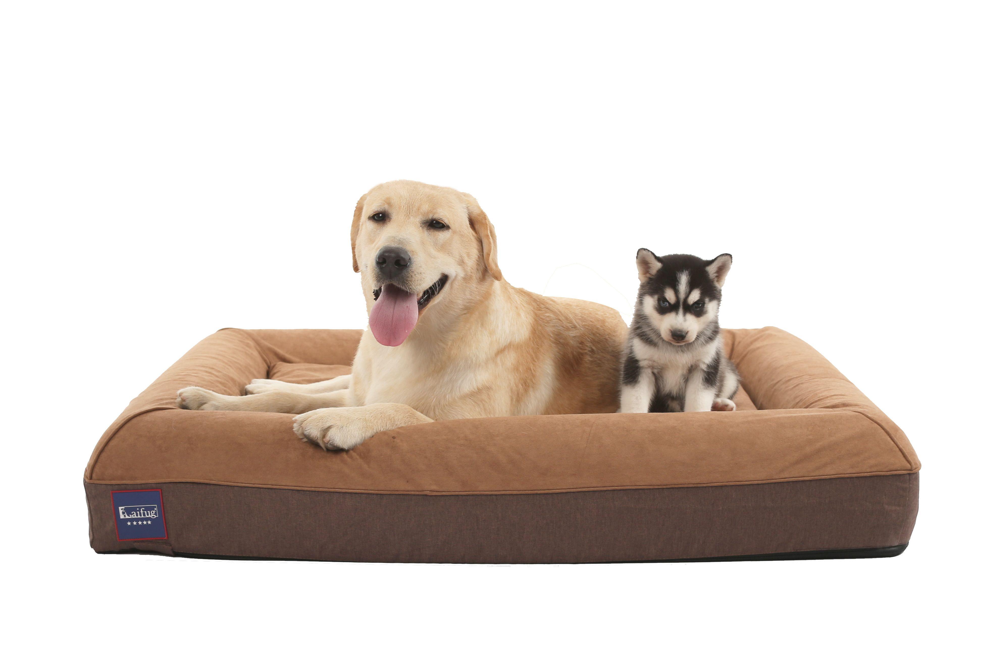 laifug orthopedic memory foam dog bed