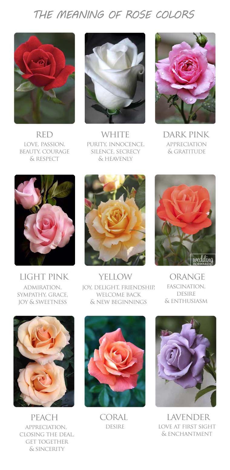 The Flower Color Meanings For Wedding Bouquet Wedding Forward Wedding Bouquets Wedding Flowers Flower Arrangements