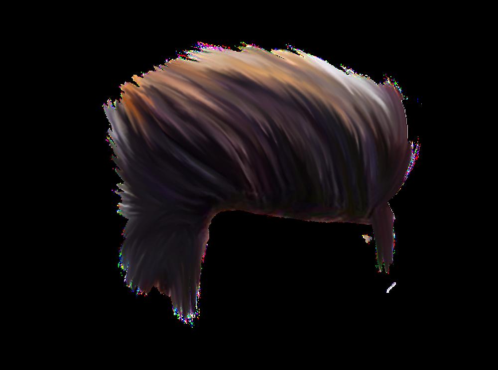 Pin By Sanju Sawant On Sanju Hair Png Picsart Png Hair