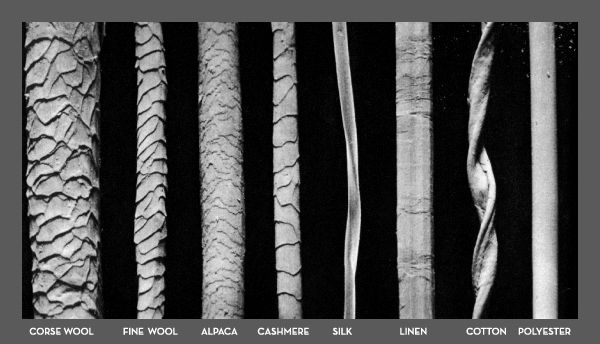 Wool Fibers under microscope | Cashmere Fashion ...