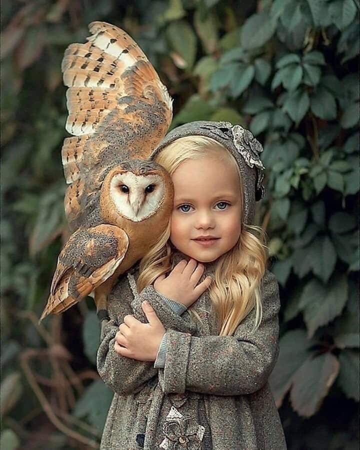 Nature S Lovers On Fotos De Aves Lechuza Bebe Y Fotografia Animal