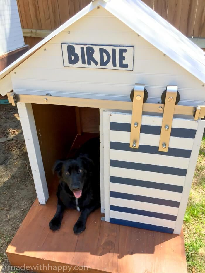 Diy Dog House Barn Door Dog House Cat House Diy