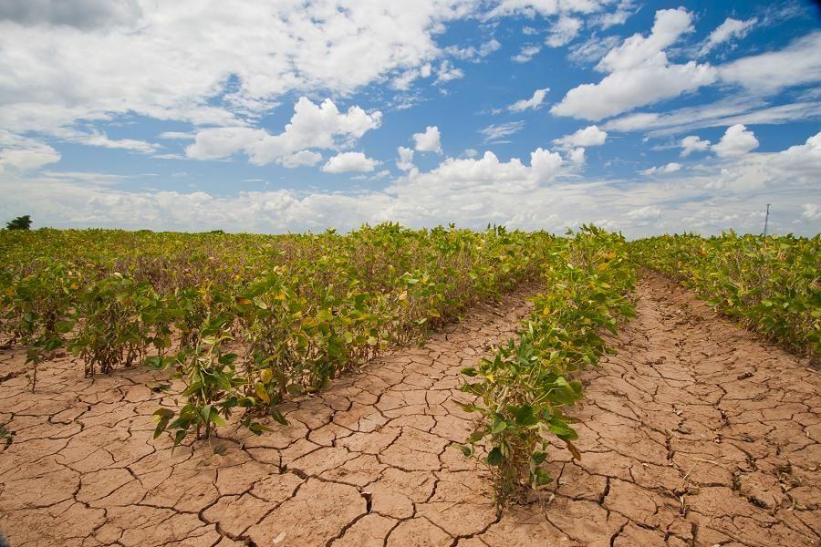 Photo of Ontario muss härter arbeiten, um die Klimaschutzziele zu erreichen kawarthaNOW