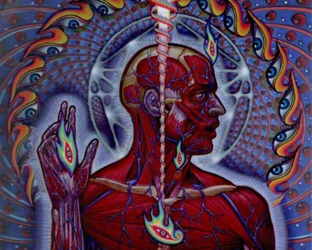 Images For Tool Lateralus Album Art Tool Band Artwork Album Art Best Album Art