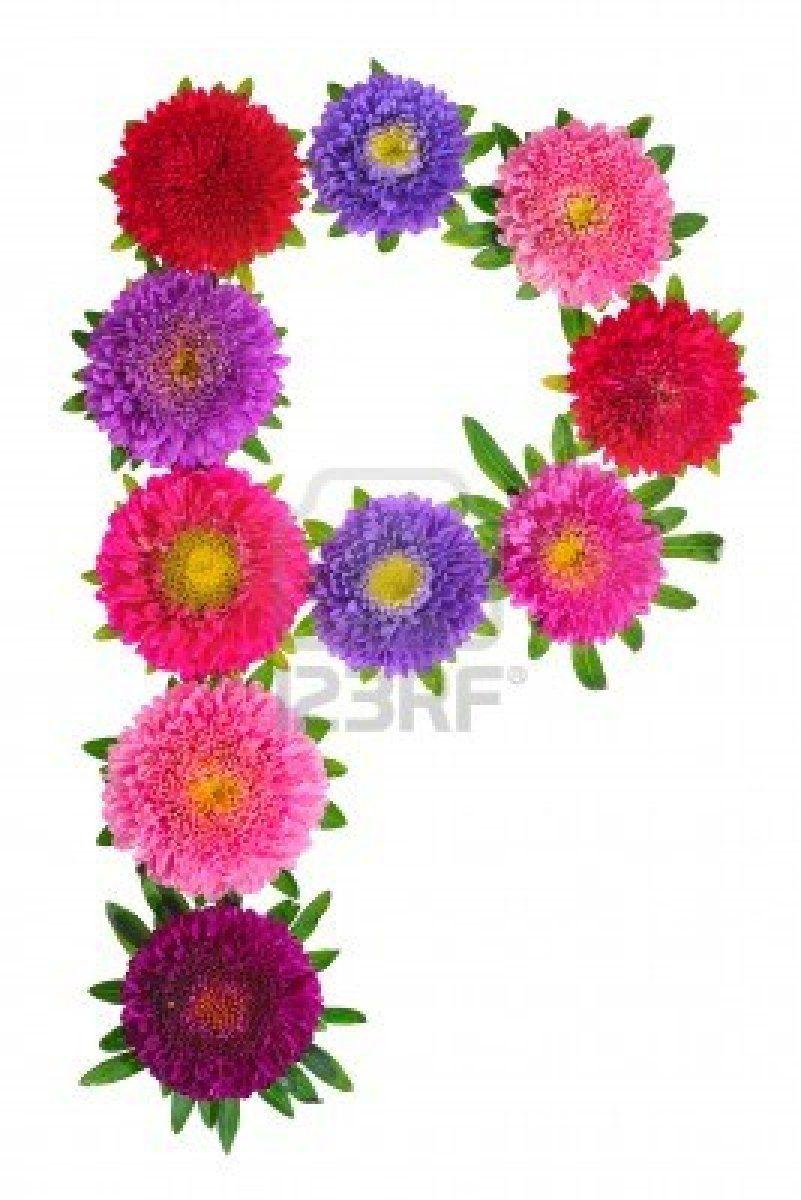 Pretty Flowers in P