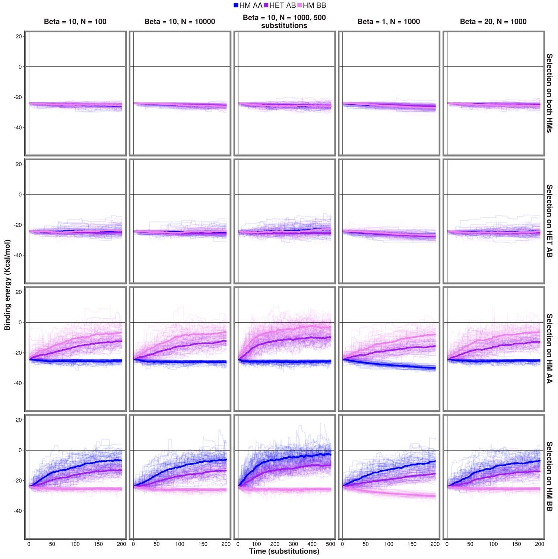 7 General Evolution And Natural Selection Worksheet In
