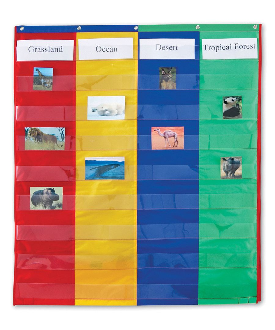 Look at this two four column double sided pocket chart set on