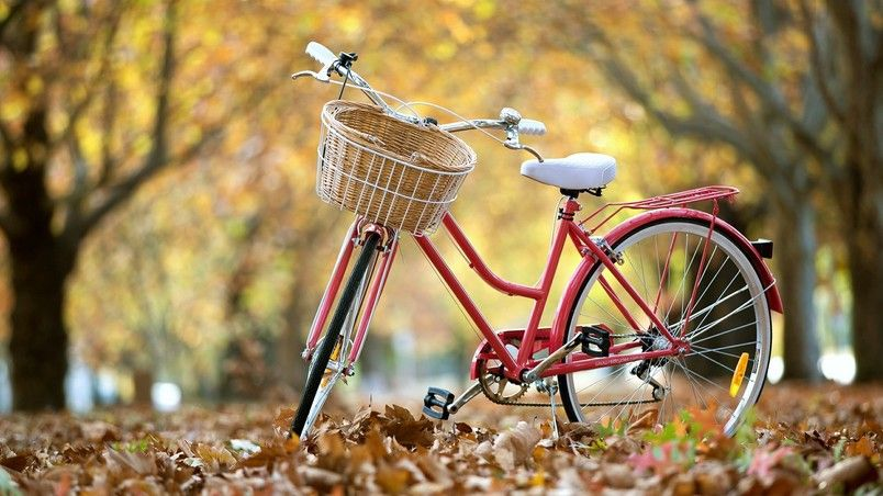 Red Classic Bike Hd Wallpaper Bicycle Wallpaper Bicycle Red Bicycles