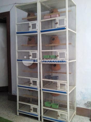 Wooden Cage Bird Cage Finch Cage Cage