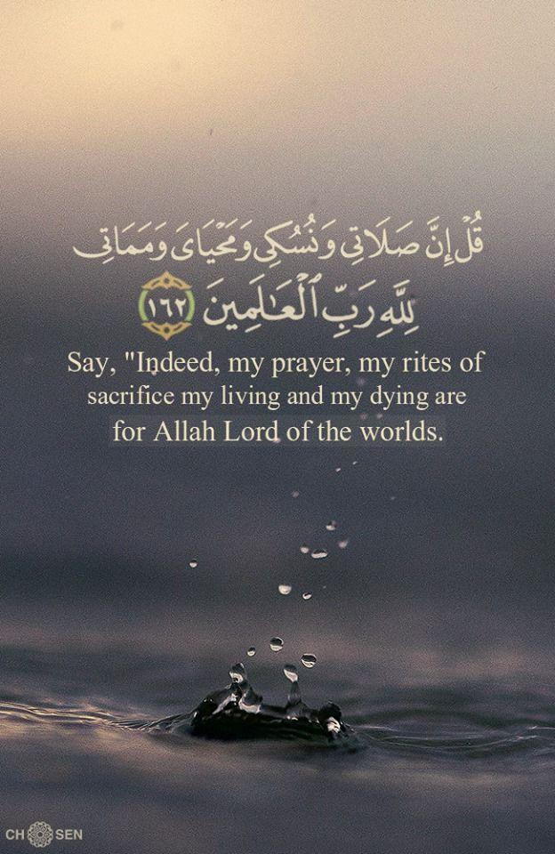 ق ل إ ن ص ل ات ي و ن س ك ي و م ح ي اي و م م ات ي ل ل ه ر ب ٱل ع ل م ين ١٦٢ الانعام Quran Quotes Quran Quotes Love Quran Quotes Inspirational