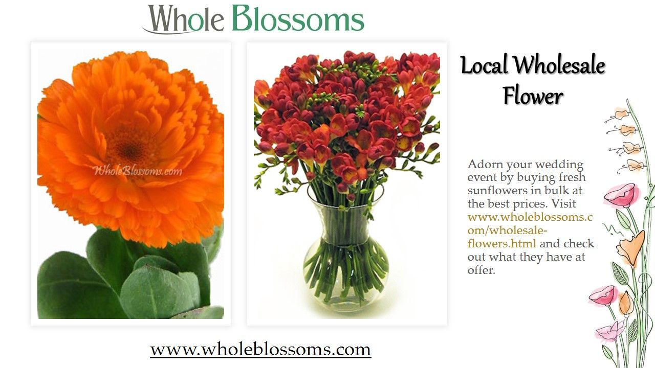 Local Wholesale Flower (With