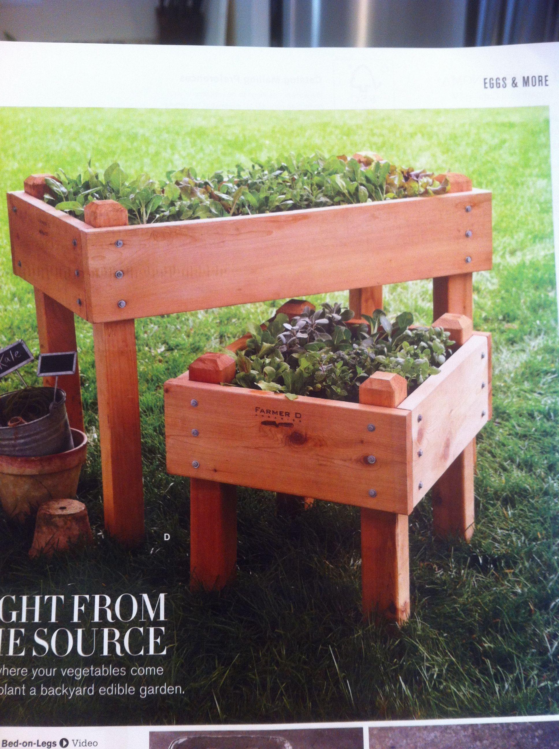 Cedar raised bedonlegs from edible