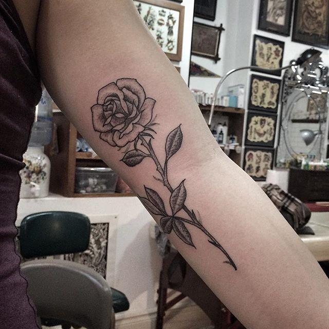 Jennifer Lawes Long Stem Rose A Beautiful Canvas Tattoos Rose