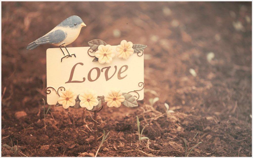 Cute Love Background Wallpaper Cute Love Background Wallpaper 1080p Cute Love Background Wallpape Love Wallpaper Love Wallpaper Backgrounds Love Backgrounds