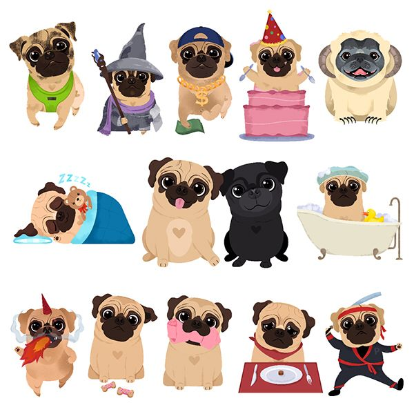 Cachorros …   Pinteres…