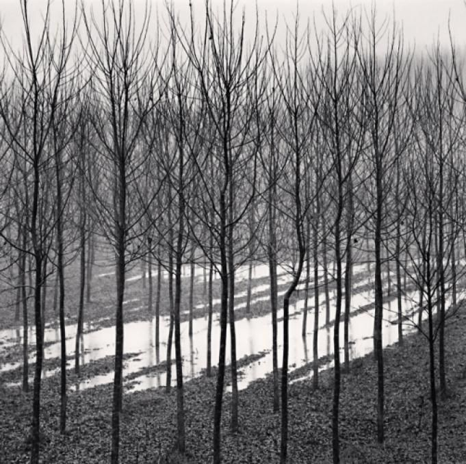 Flooded Fields, Luzzara, Emilia Romagna, Italy, 2008.  Michael Kenna