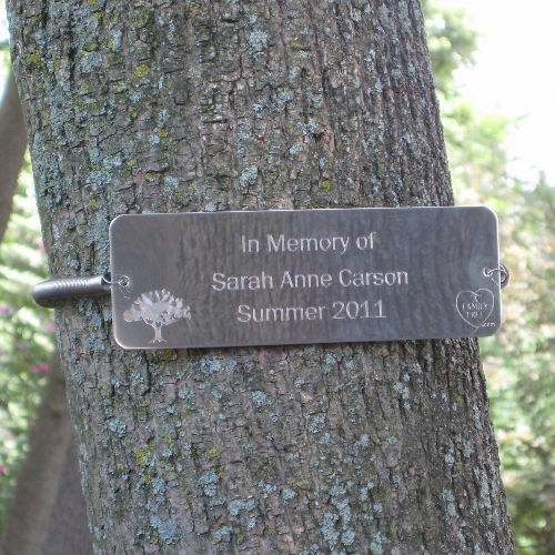 Tree Huggers 174 Tree Plaques Personalized I Want