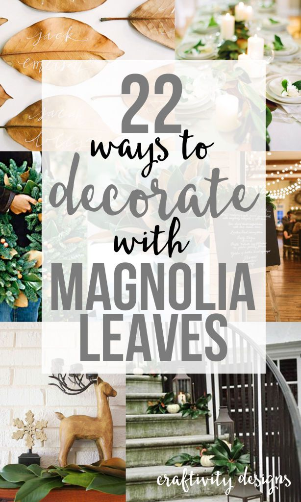 22  Ways to Decorate with Magnolia Leaves   Merry Christmas     22 Ways to Decorate with Magnolia Leaves via  craftivityd    Thanksgiving   Christmas and Holiday Entertaining    from centerpieces to wreaths to  tablescapes