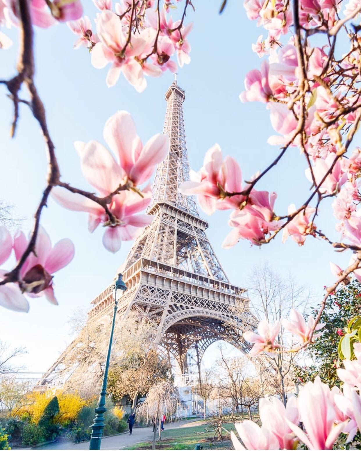 Eiffel Tower in Paris photo inspiration