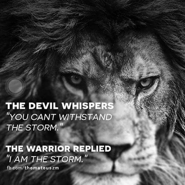 The Heart Of A Lion Quotes Quotes Inspirational Quotes Lion