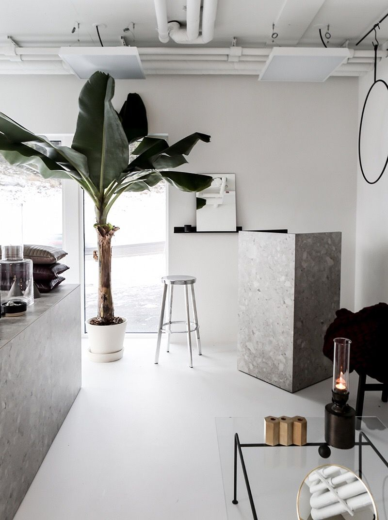 white room with grey marble accents and palm tree cafe interiorsmodern - Marble Cafe Decoration