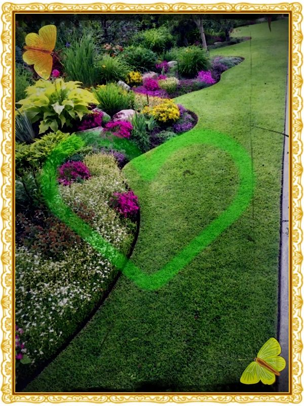 Kleine Blumenwiese Im Garten Anlegen Outdoor Garden Outdoor Landscape