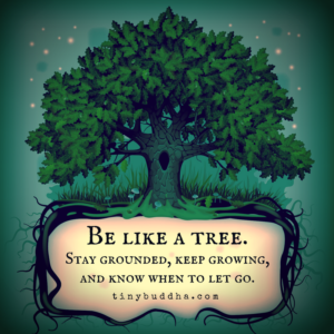 Be Like a Tree Tiny Buddha When to let go, Tree quotes