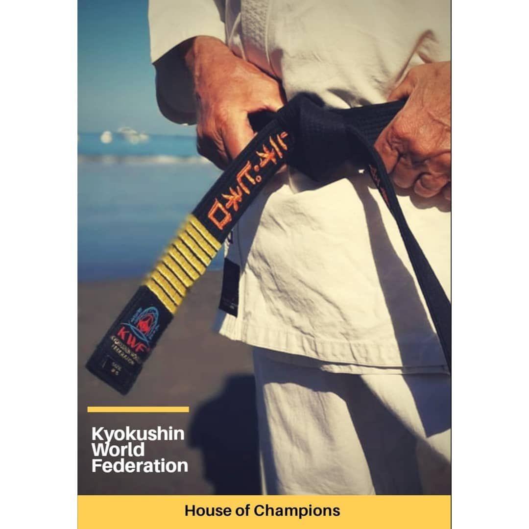 Kwf Kyokushinkai Karate The House Of Champions Karate Champion