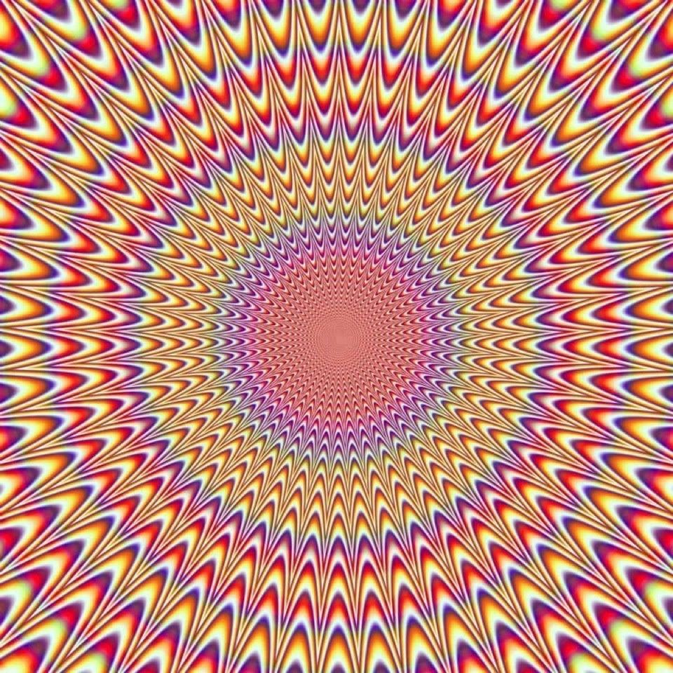 Stillness is an illusion. Freaky!