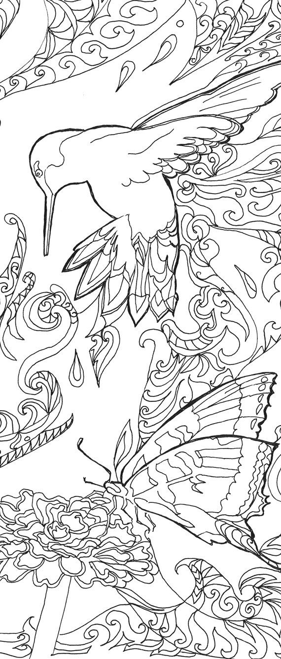 Printable coloring pages Adult Coloring book Hummingbird Colibri Art ...