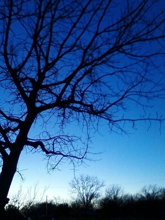 I took this picture with my CRAP phone at eastfield while I was still in school, one of my fav pictures in the world