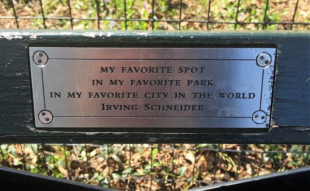New York City Central Park Bench Travel New York Pinterest