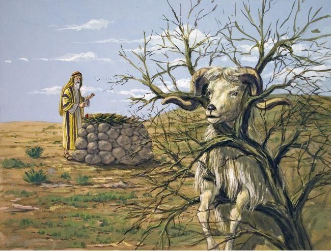 Shana Tova! Happy  5776! | Biblical art, Bible pictures, Bible art