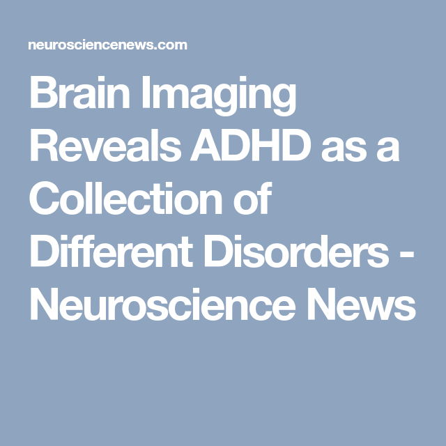 Brain Imaging Reveals Adhd As >> Brain Imaging Reveals Adhd As A Collection Of Different Disorders