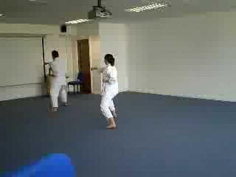 Shotokan Kata Kion Shotokan Martial Arts Kata