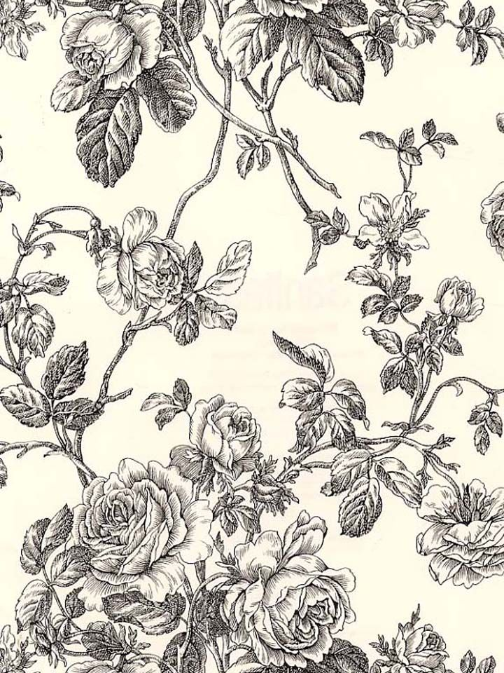 Toile Floral Vine Wallpaper Vine Wallpaper Washable Wallpaper Floral Toile Black and cream floral wallpaper